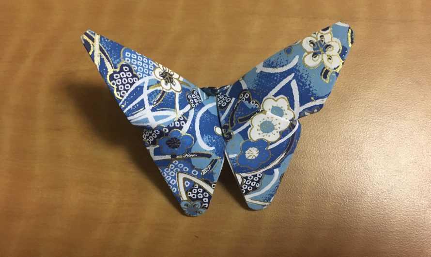 Бабочка оригами — 190 фото мастер-класс простых схем изготовления красивых бабочек