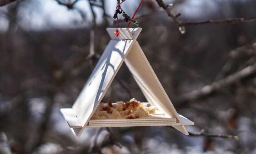 Кормушка для птиц своими руками: 125 фото и пошаговый видео мастер-класс изготовления кормушки